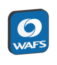 Wide Area File Services (WAFS)